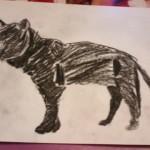 Кошка Бурма — рисуйте с нами!