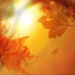 Осенние стихи — ОКТЯБРЬ