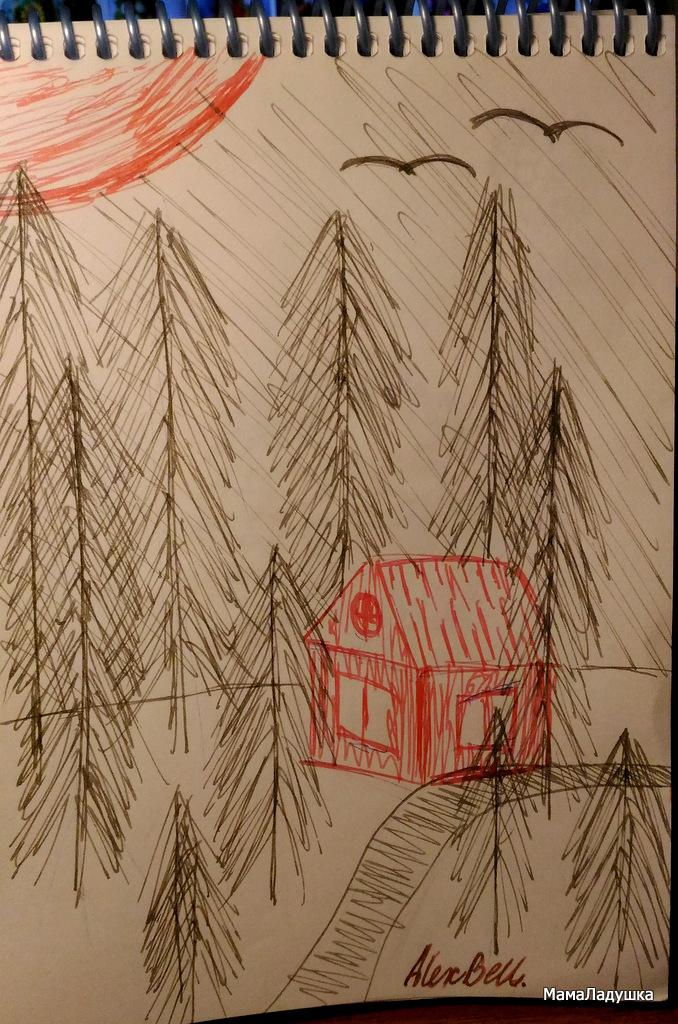 рисунки ручкой (4)