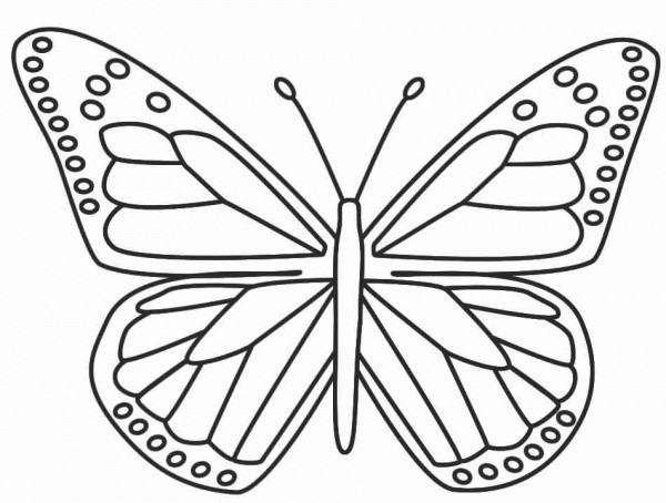 The Childrens Butterfly Site