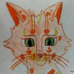 Коты-воители — племя Вьюги