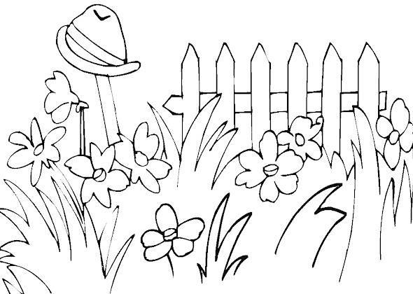 Раскраска цветы в саду