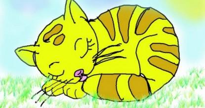 Кошка Соня и …