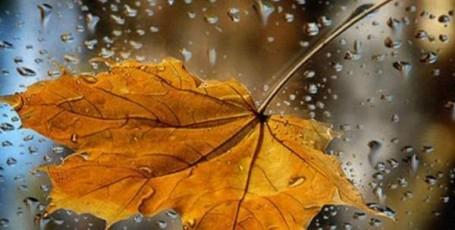 Стихи октября