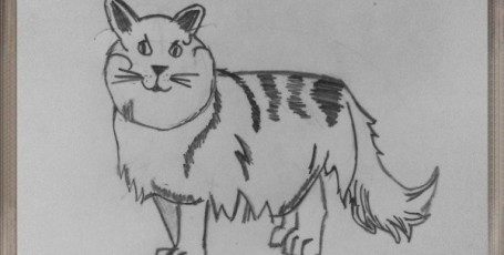 Рисуем КОШЕК — длинношерстая кошка