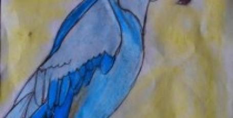 Попугай Голубая Ара