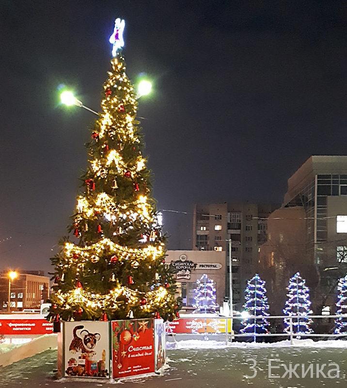 Город новогодний 2019 (15)