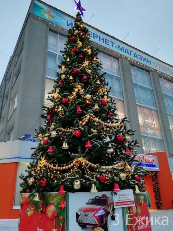 Город новогодний 2019 (18)