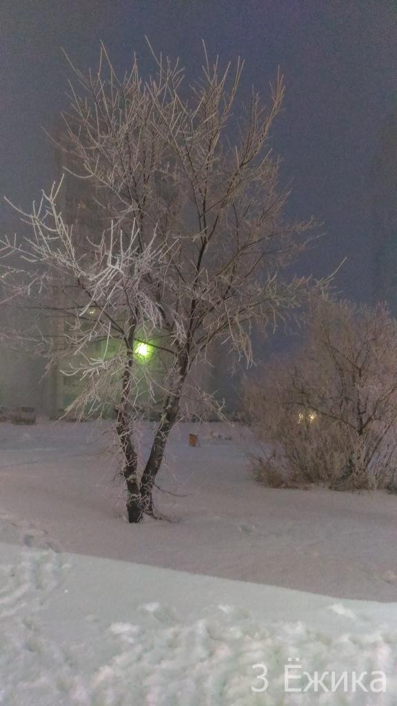 Зимний город - фотозима - декабрь (14)