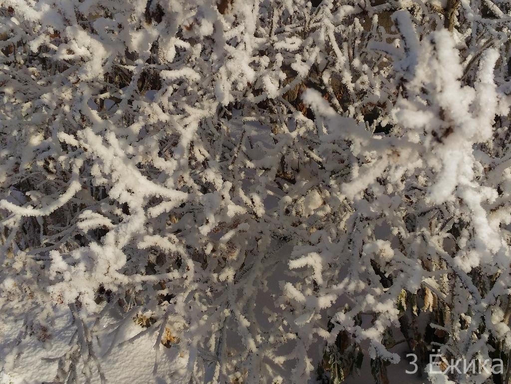 Зимний город - фотозима - декабрь (16)