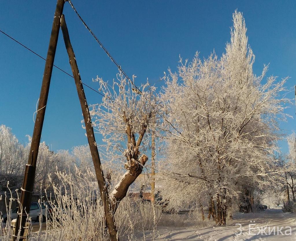 Зимний город - фотозима - декабрь (17)