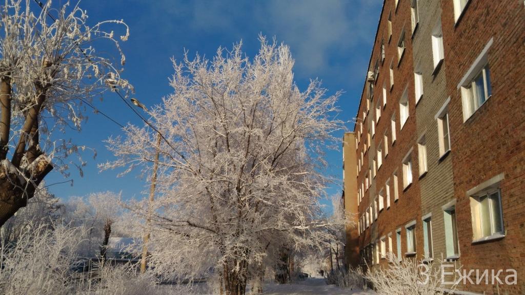 Зимний город - фотозима - декабрь (18)