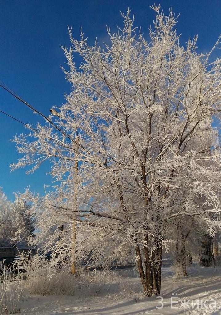 Зимний город - фотозима - декабрь (19)