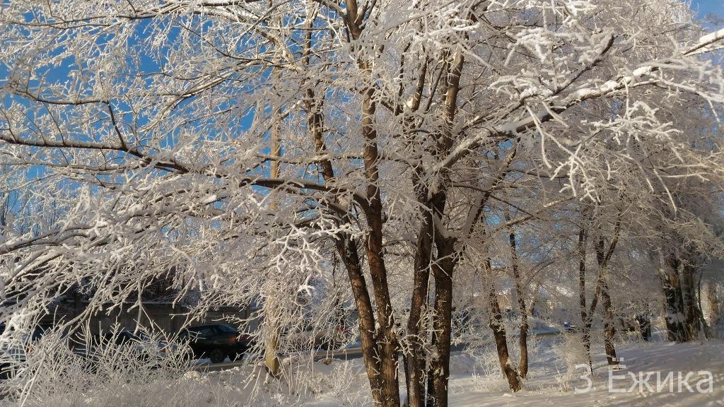 Зимний город - фотозима - декабрь (20)