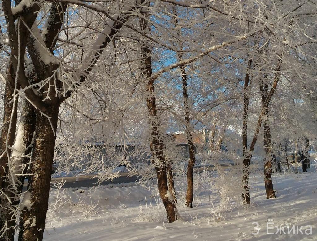 Зимний город - фотозима - декабрь (21)