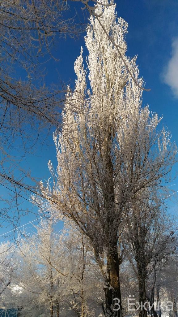 Зимний город - фотозима - декабрь (22)
