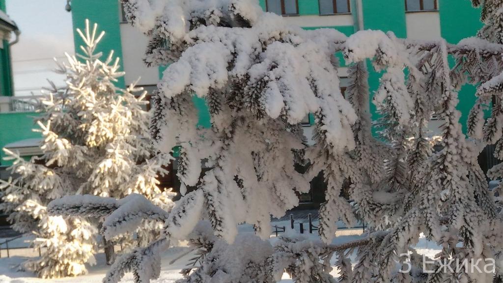 Зимний город - фотозима - декабрь (25)