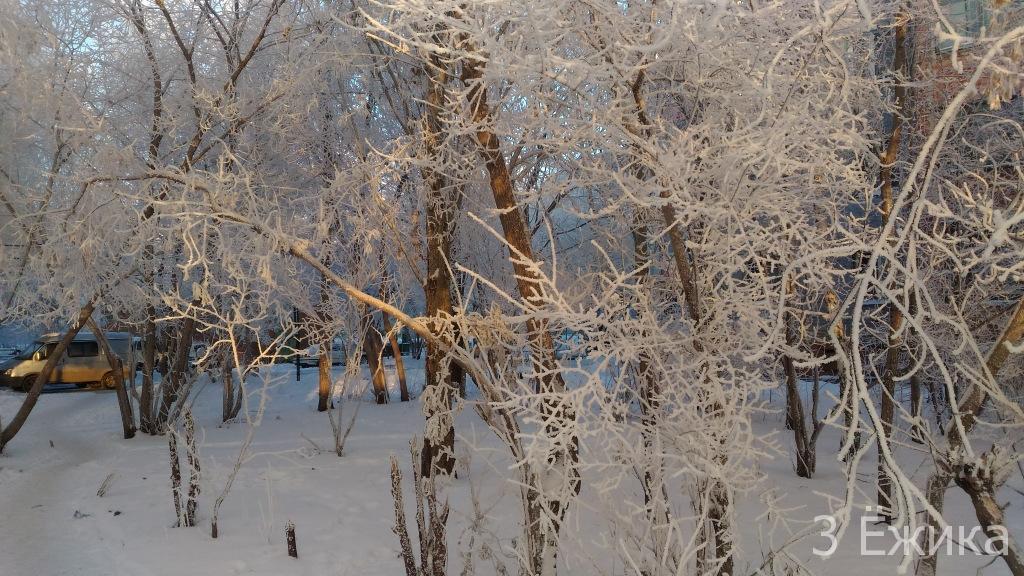 Зимний город - фотозима - декабрь (28)