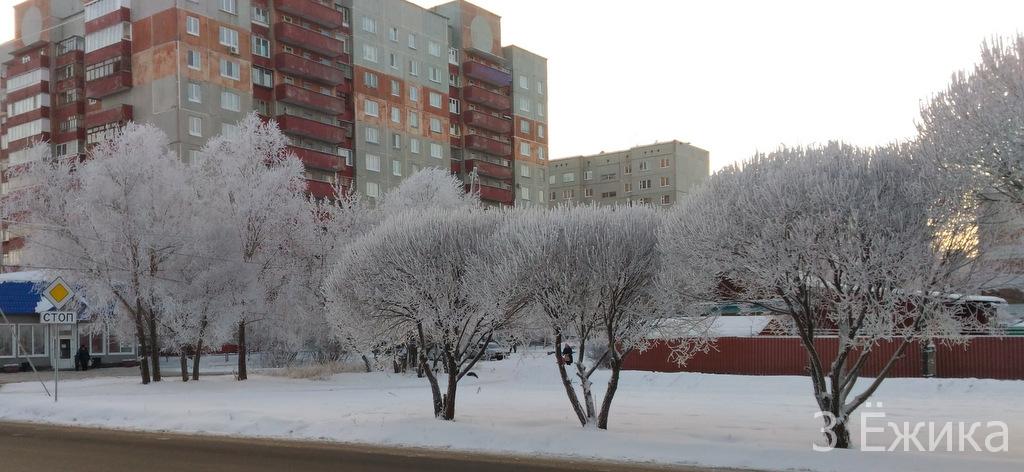 Зимний город - фотозима - декабрь (29)
