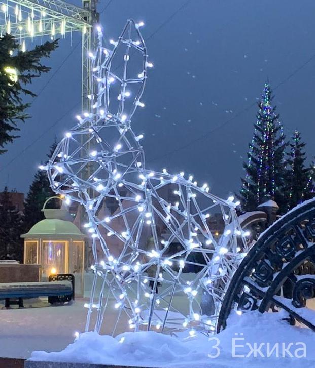 Омск 2020 новый год (28)