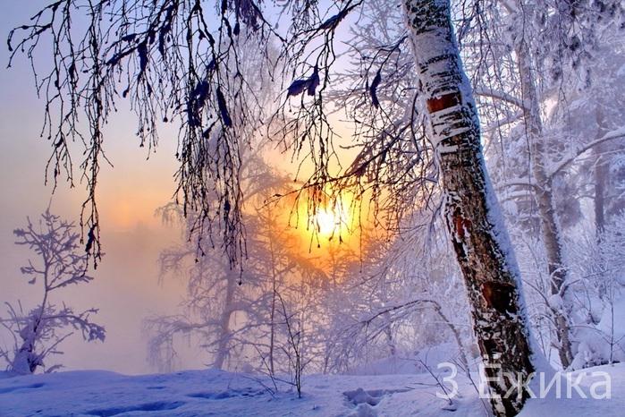 109344740_3303834_winter_8