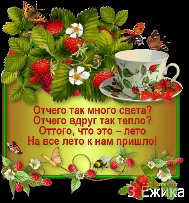 113545721_large_0_e627f_b78451f3_orig