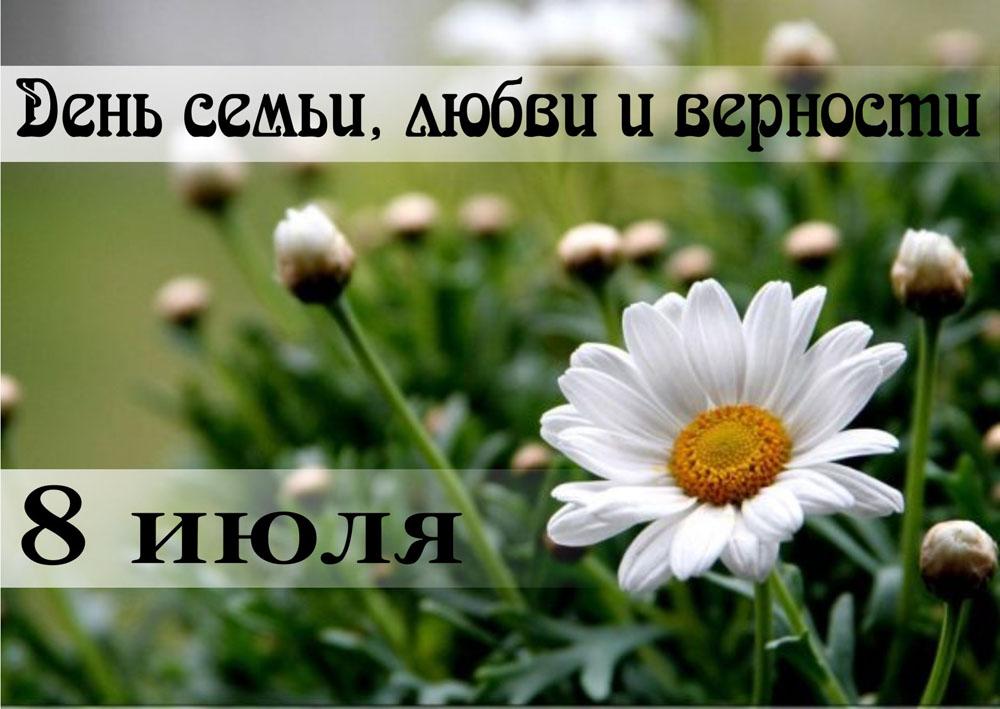 1249394057_10.-den-semi