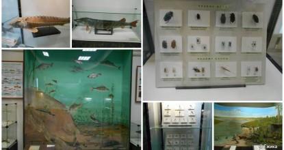 Наш любимый музей — фото-прогулка — часть 2