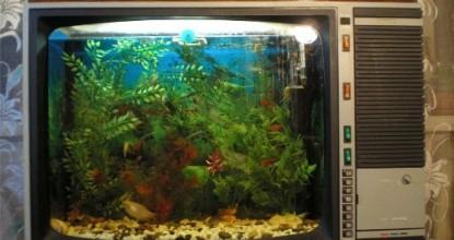 Клевый аквариум из зомбиящика.