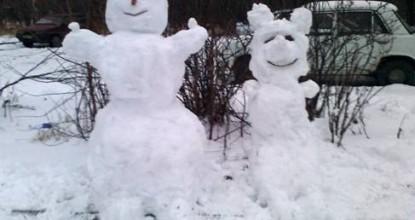 Cнежные друзья.