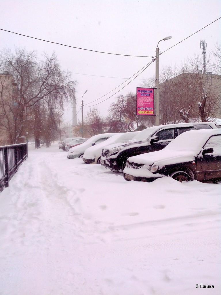 снегопад (10)