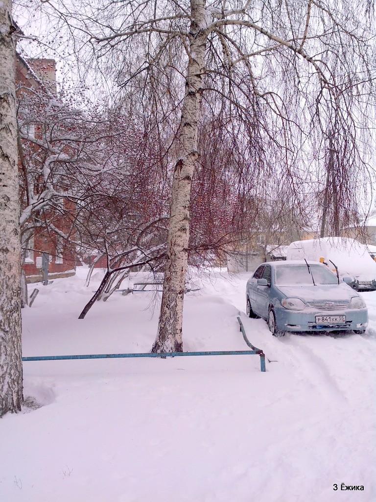 снегопад (11)