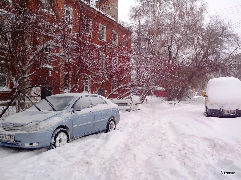 снегопад (12)