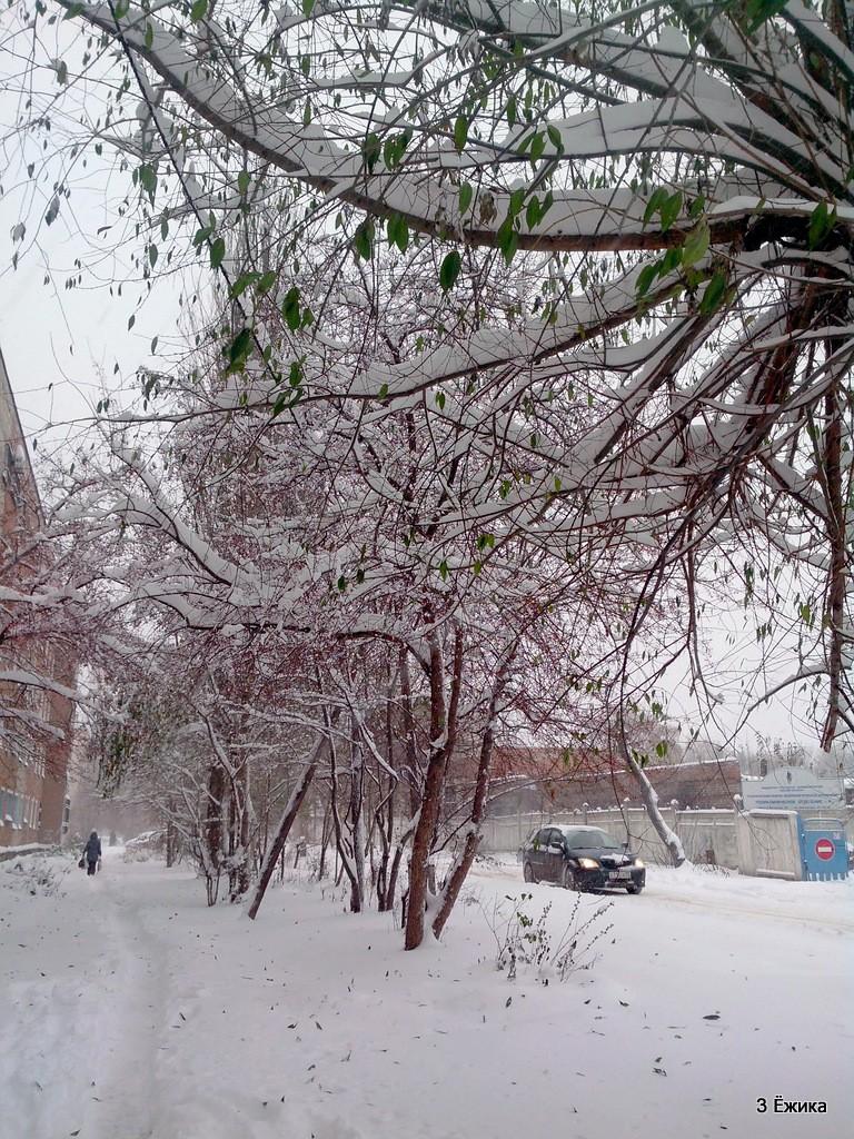 снегопад (7)