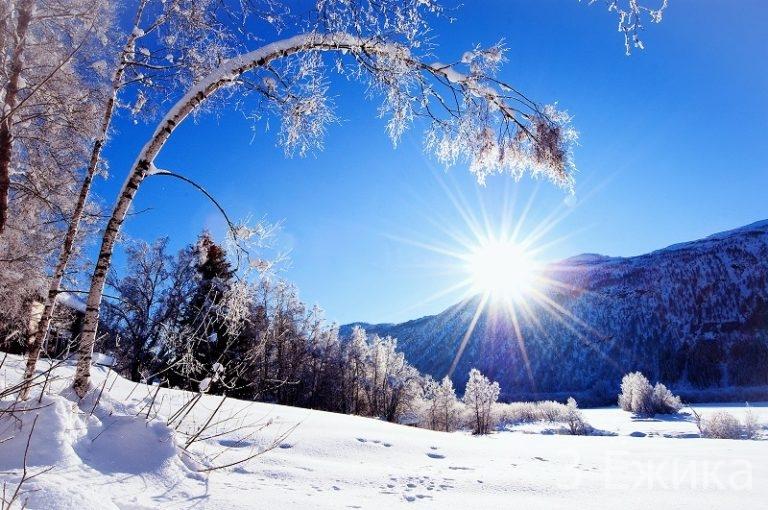 zimnee-solntsestotnie-6-768x510